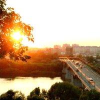 луч солнца :: Наталья Сазонова