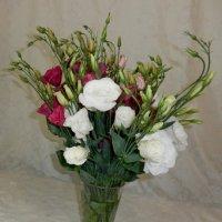 Цветы нам дарят настроенье, И пробуждают вдохновенье, Как символ чистой красоты... :: Люша