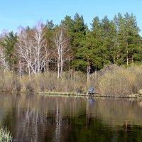 Рыбалка на Барнаулке. :: Elena Sartakova