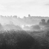 Раннее утро с туманом и низким солнцем :: Михаил Онипенко