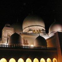 Купола мечети ночью... :: Senior Веселков Петр