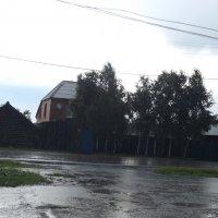 дождь :: валя елисеева