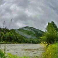 После дождя.... :: Юрий Гординский
