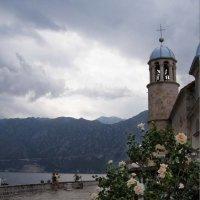 церковь Божьей Матери,  колокольня :: Анна Воробьева