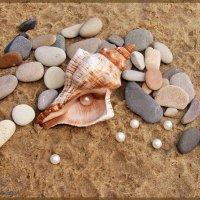 Морская композиция :: °•●Елена●•° Аникина♀