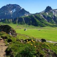 синие горы и изумрудные долины :: Elena Wymann