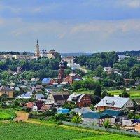 Вид  на Боровск  с куполами многочисленных церквей. :: Тамара Бучарская