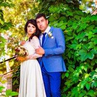 Елена и Андрей :: Елена Бологова