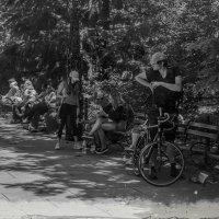 В парке :: Олег Чемоданов