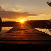 Навстречу солнцу :: Николай Агапитов