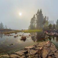 Туманное настроение, или время мечтать :: Фёдор. Лашков
