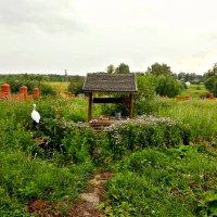 Вот моя деревня, здесь мой дом родной! :: Михаил Столяров
