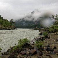 Ранним утром,река Катунь. :: Алексей Мезенцев