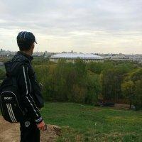 Я и Лужники :: Андрей Солан