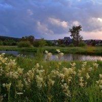 Вечерний пейзаж. :: Наталья