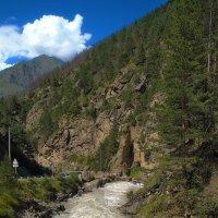 горная речка куда то бежит... :: M Marikfoto