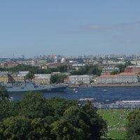 Вид с птичего полета на Неву :: Павел Кузнецов