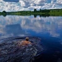 Окунуться в лето... :: Sergey Gordoff