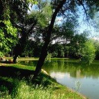 на берегу озера :: Елена Семигина