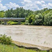 Мост через реку Кубань :: Игорь Сикорский