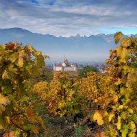 затерянный среди виноградников :: Elena Wymann