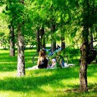 Отдых на траве :: Сергей Царёв
