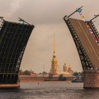 Дворцовый мост разведен :: Олег Денисов