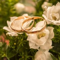 Свадьба :: Елена Колыбина