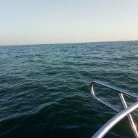 Море :: Galina
