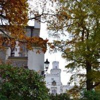 Парк замка Глубока :: Ольга