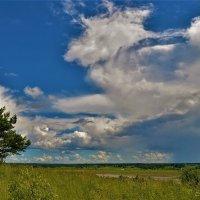 На Валдайских холмах... :: Sergey Gordoff