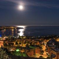 Лунная ночь :: Сергей Бушуев