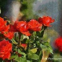 В царстве роз :: Photo GRAFF