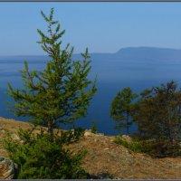 Панорама берегов Ольхона с видом на остров Замогой. :: Андрей Янтарёв