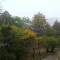 Осень   в    Ивано - Франковске :: Андрей  Васильевич Коляскин