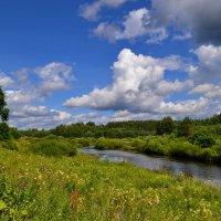 .... река медведица тверская область... :: Victor