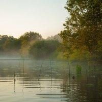 Утро на Угре :: Alexander Petrukhin