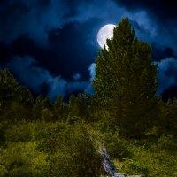 Полная луна :: Владимир Черкасов