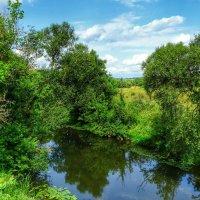 Малые реки Смоленщины :: Милешкин Владимир Алексеевич