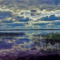 Сказка Мегленского озера... :: Sergey Gordoff