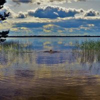 Уплывшая в Сказку... :: Sergey Gordoff