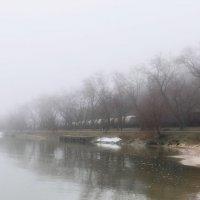 Туман на море :: Анатолий Шулков