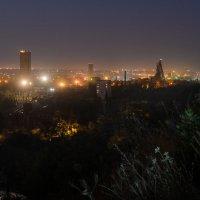 Ночь над городом :: Inga Tokar