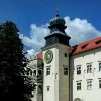 Замок в Йоцовском национальном парке.Краков. :: Galina Belugina