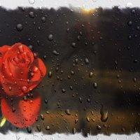 Розовый вечер :: Валентина ツ ღ✿ღ