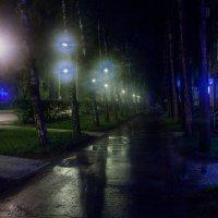 Ночной Академгородок. :: Оксана Ingoda