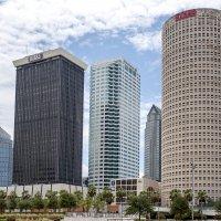 Tampa :: Ludmila