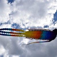 Воздушные змеи в Царицино :: Катерина Клаура