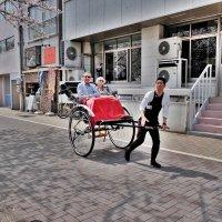 В Токио на рикшe :: Swetlana V