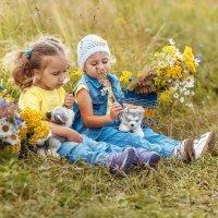 Лето - это маленькая жизнь... :: Любовь Махиня